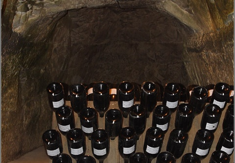 Caves Taittinger #06