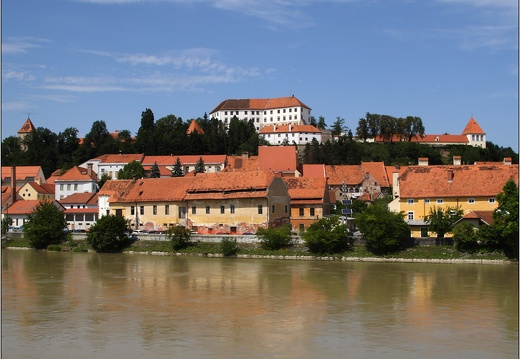 Ptuj, rives de la Drava #19